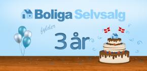 Selvsalg-3aar